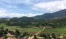 Sở hữu 4000m2 đất và 70 cây sầu riêng chỉ với 580triệu - Nghỉ dưỡng