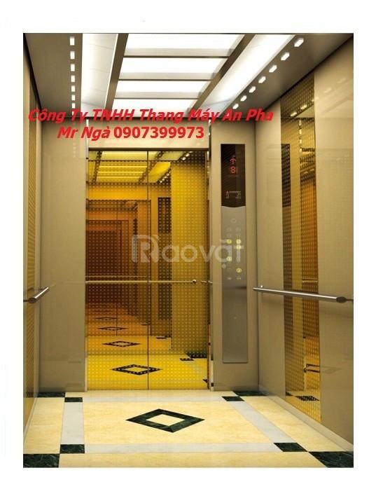 Sản xuất thang máy tải khách, thang máy khách sạn