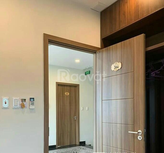 Cửa nhựa giả gỗ cao cấp, cửa ABS Hàn Quốc