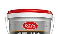 5 dòng sơn nước nội ngoại thất chính của Kova được yêu thích hiện nay.