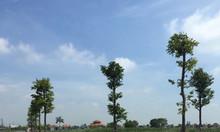 Bán gấp lô góc dự án Dragon city Thái Bình