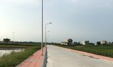Em có lô đất 350 triệu tại Hòa Bình, Kiến Xương, Thái Bình