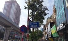 Ao Sen, Mỗ Lao, Hà Đông, nhà đẹp, ôtô đỗ cửa, kd, giá 6.9 tỷ