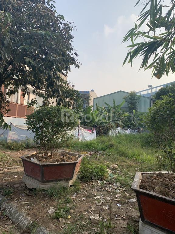 Chính chủ cần bán lô đất SHR, măt tiền rộng, giá rẻ tại KĐT Đồng Sơn