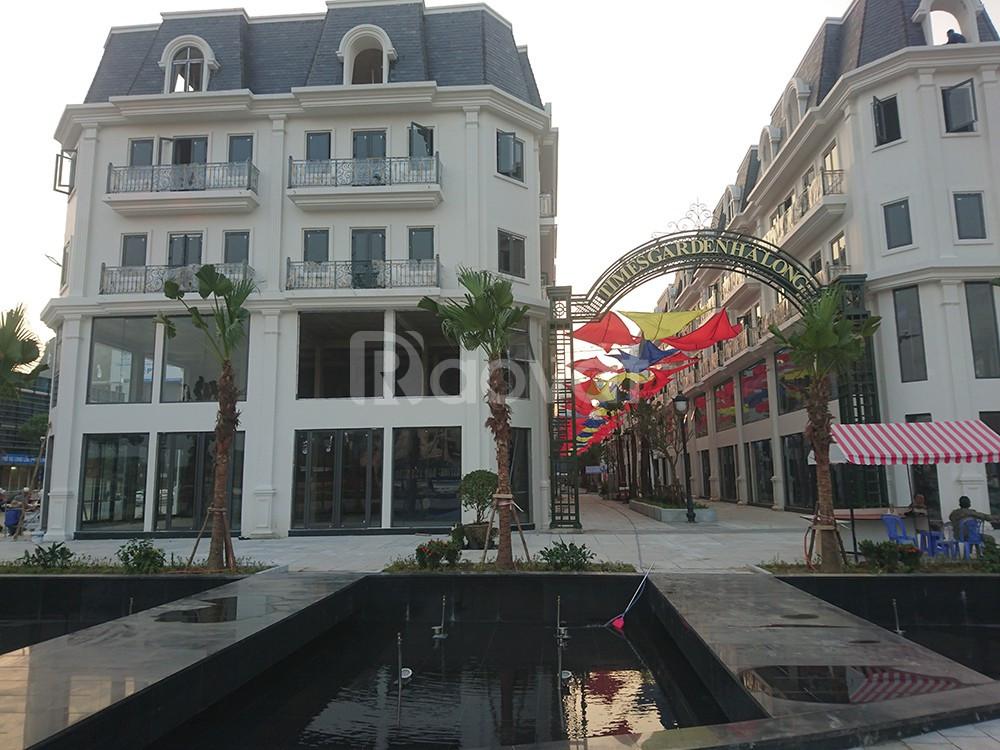 Cần bán shophouse time garden tại ngã 5 cột đồng hồ Hạ Long