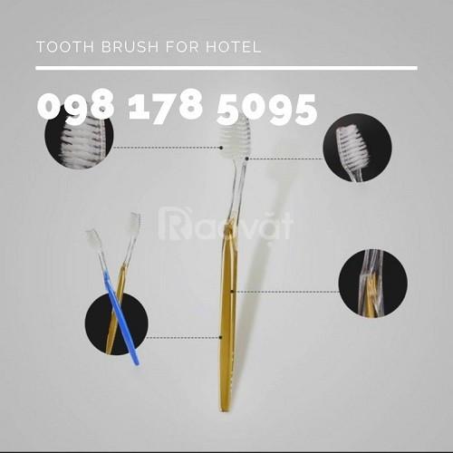 Bàn chải dùng 1 lần dành cho khách sạn, khu du lịch, resort,…giá rẻ