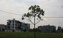 Mở bán 200 lô đất đẹp Xuân Hòa, Phúc Yên, giá từ 10tr/m sổ đỏ trao