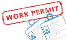 Xin cấp lại giấy phép lao động do bị mất, hỏng hoặc thay đổi thông tin