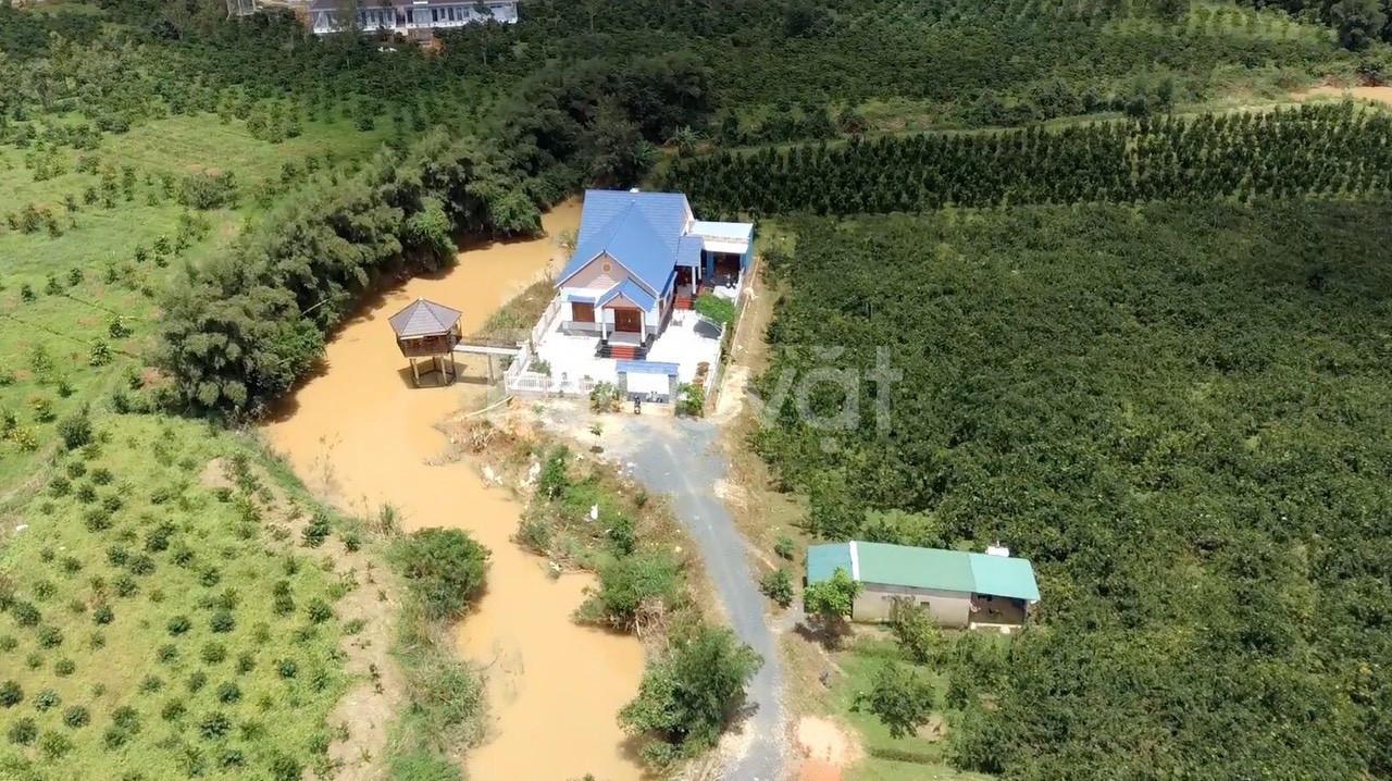 Biệt thự 2,7 ha cách trung tâm Bảo Lộc 9km Thủy Tạ.