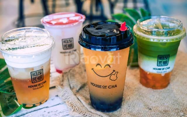 In logo ly nhựa, ly giấy, ly thủy tinh giá rẻ, miễn phí thiết kế logo