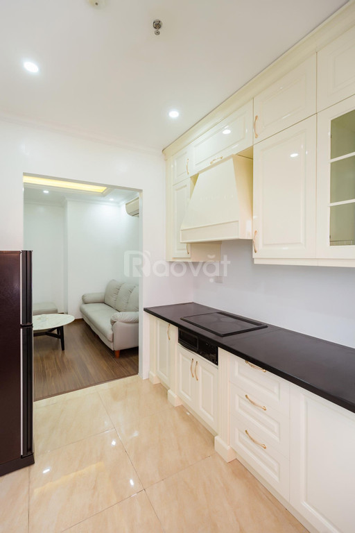 Cho thuê CHDV The Peninsula Hải Phòng, 50m2, full nội thất, giá tốt.