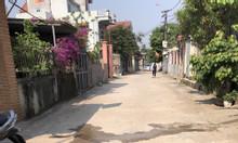 Chính chủ bán 137m2 thôn Vĩnh Thanh Vĩnh Ngọc Đông Anh
