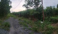 Cần bán gấp 1 sào đất Bàu Cạn, Long Thành gần giáo xứ Thiên Ân