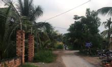 Đất nền thổ cư, ngay khu sầm uất Tân Hương