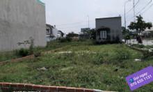 Bán đất gần cảng Cái Mép Phú Mỹ Bà Rịa Vũng Tàu