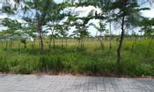 Đất KDC cao cấp Việt Úc Varea, 100m2, giá 1 tỷ