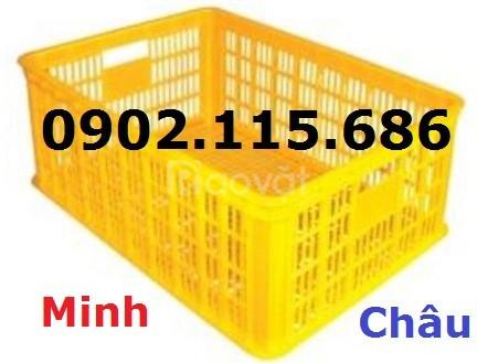 Rổ nhựa công nghiệp, rổ nhựa đựng hàng trong siêu thị