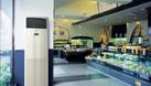 Cung cấp lắp đặt máy lạnh tủ đứng Daikin giá rẻ chất lượng  (ảnh 1)