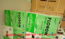 Gas lạnh Floron R22 (13.6kg & 22.7kg/bình)