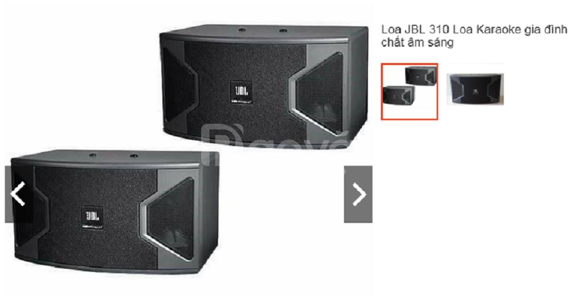 Loa JBL 310 - loa karaoke gia đình, O985254O96 Âm thanh