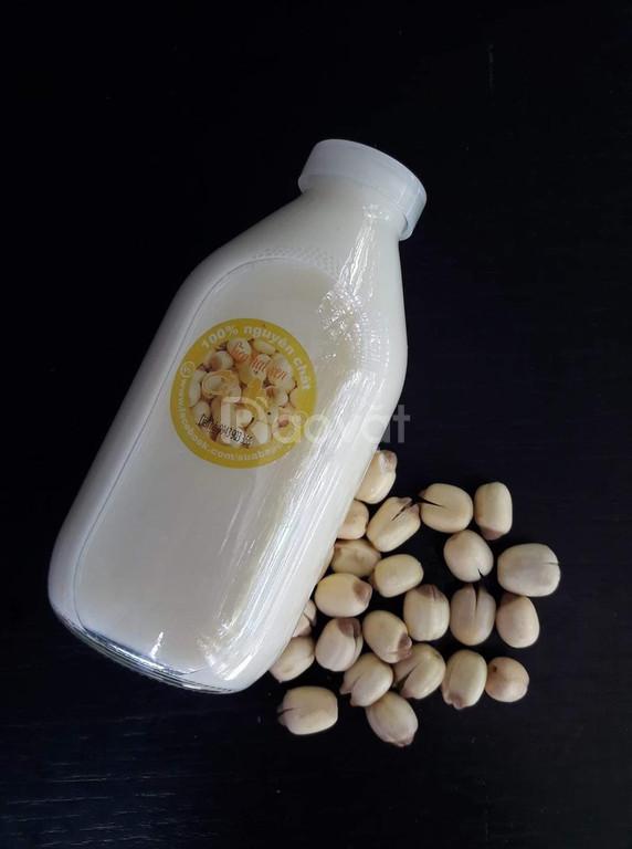 Sữa Bắp - sữa Hạt