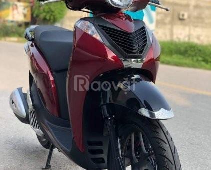 Sh Mode125cc màu đỏ ghi đời 2018