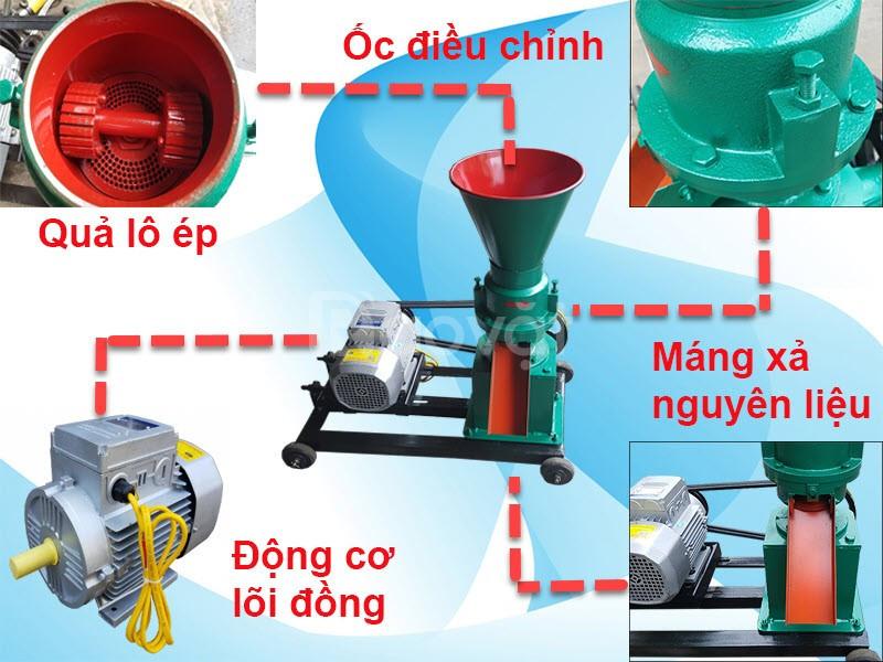 Máy ép cám viên trục đứng gia đình (dùng motor hoặc đầu nổ)