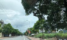 Đất Vũng Đục, Cẩm Phả, Quảng Ninh đáng đầu tư gần dự án Dreen Dragon