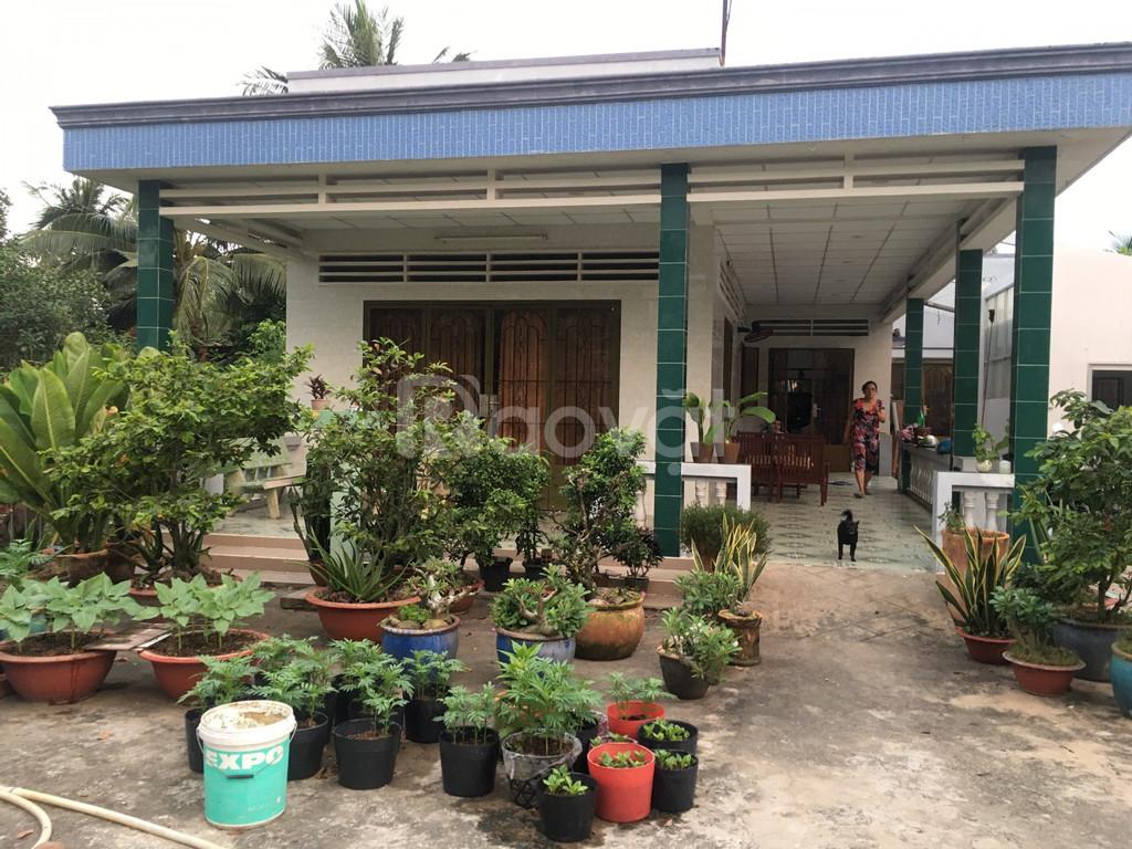 Đất huyện Châu Thành, Tiền Giang, sát QL 1A