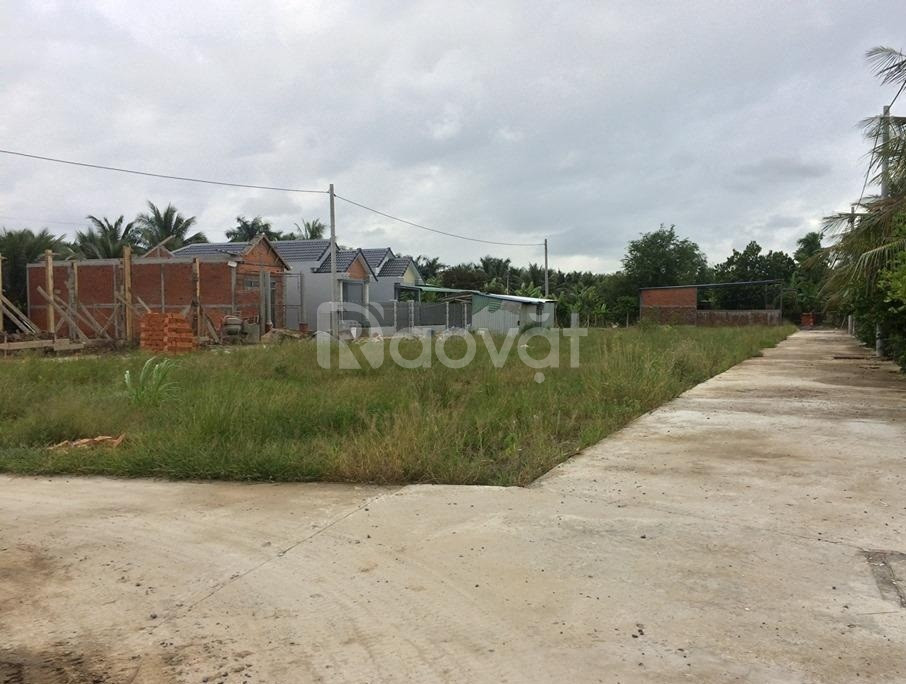Bán gấp nền đất 111m2 khu công nghiệp Tân Hương giá rẻ