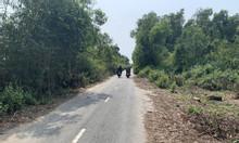Bán đất chia tài sản cho con đất mặt tiền Thái Mỹ, Củ Chi