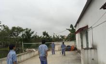 Cần bán 1 trang trại lợn thịt dt hơn 10.000m2 ở Tân Liên, Vĩnh Bảo