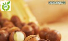 Mua bán hạt macca Úc tại Quận Hoàn Kiếm - Hà Nội