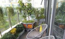Bàn ghế ban công, bàn ghế acapulco