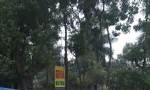 Bán 2200m2 đất dịch vụ 50 năm mặt đường 39 Ecopark Gia Lâm