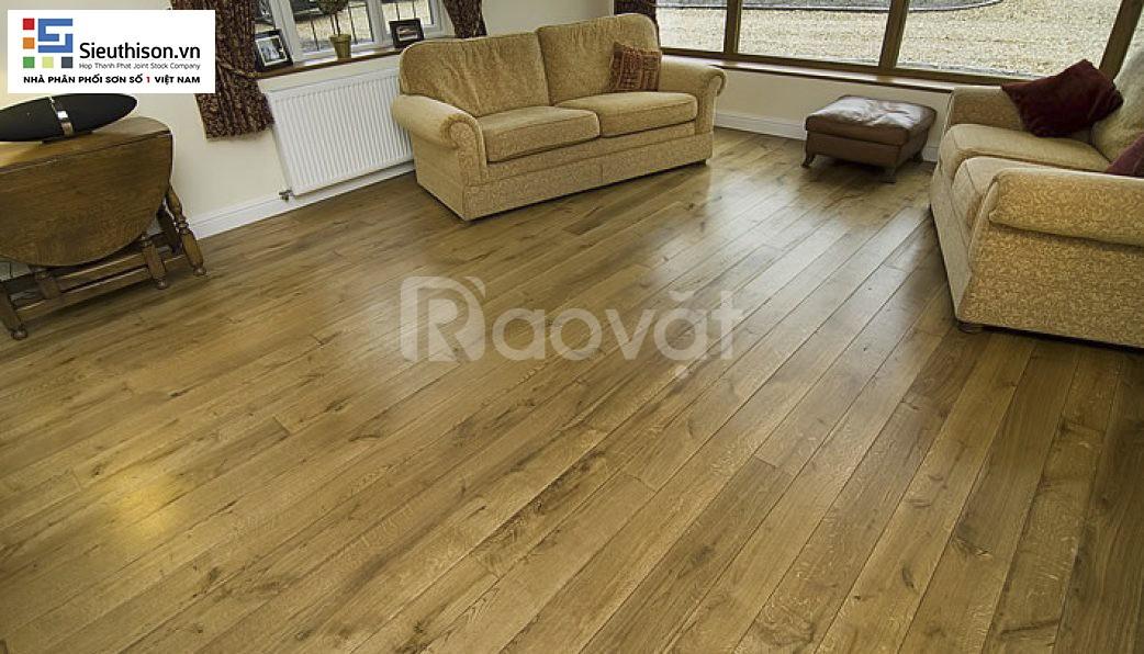 Tìm đối tác cung cấp sơn gỗ nhãn hiệu Cadin thùng 18kg chất lượng cao