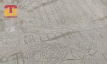 Phân phối hóa chất tăng bóng chống thấm cho sàn bê tông