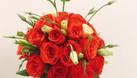 Dạy cắm hoa nghệ thuật (ảnh 4)