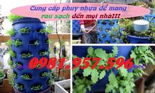 Phuy nhựa trồng cây,phuy nhựa nuôi cá, phuy chứa nước