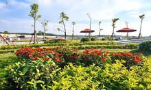 Đất nền TTHC huyện Bàu Bàng, Bình Dương mặt tiền QL13 giá 565tr/nền