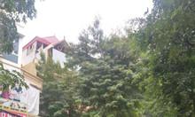 872m2 mặt phố Vũ Tông Phan, mặt tiền 25m