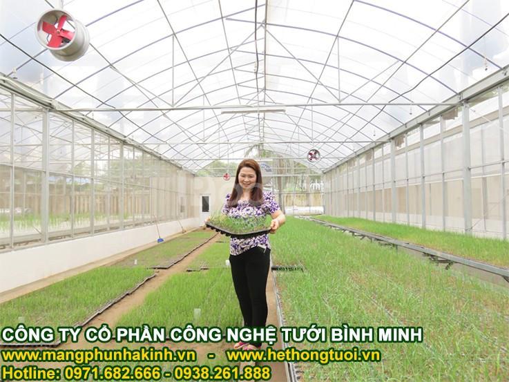 Thiết kế nhà lưới trồng rau, bản vẽ thiết kế nhà lưới