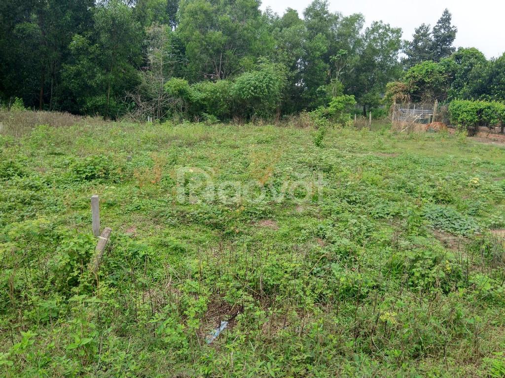 Đất chia lô Thái Mỹ, Củ Chi - 5x18, sổ hồng riêng, thổ cư 100% - 950tr