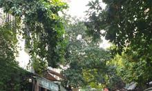 Bán nhà mặt phố Hoa Bằng, DT 60m2, 2 tầng, 8,5 tỷ.