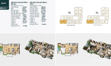 Bán 2 căn penthouse, 1 căn duplex dự án TSG Lotus Sài Đồng