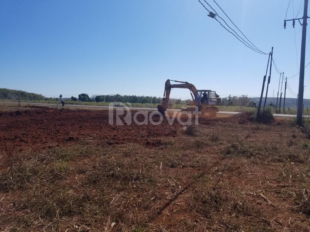 Đang cần bán miêng đất, lớn ở 1000m2 giá 3triệu/m2