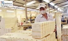 Tìm cơ sở phân phối và sản xuất sơn gỗ tại Bình Dương