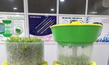 Happy tuyệt phẩm trồng rau mầm không dùng đất, giá thể
