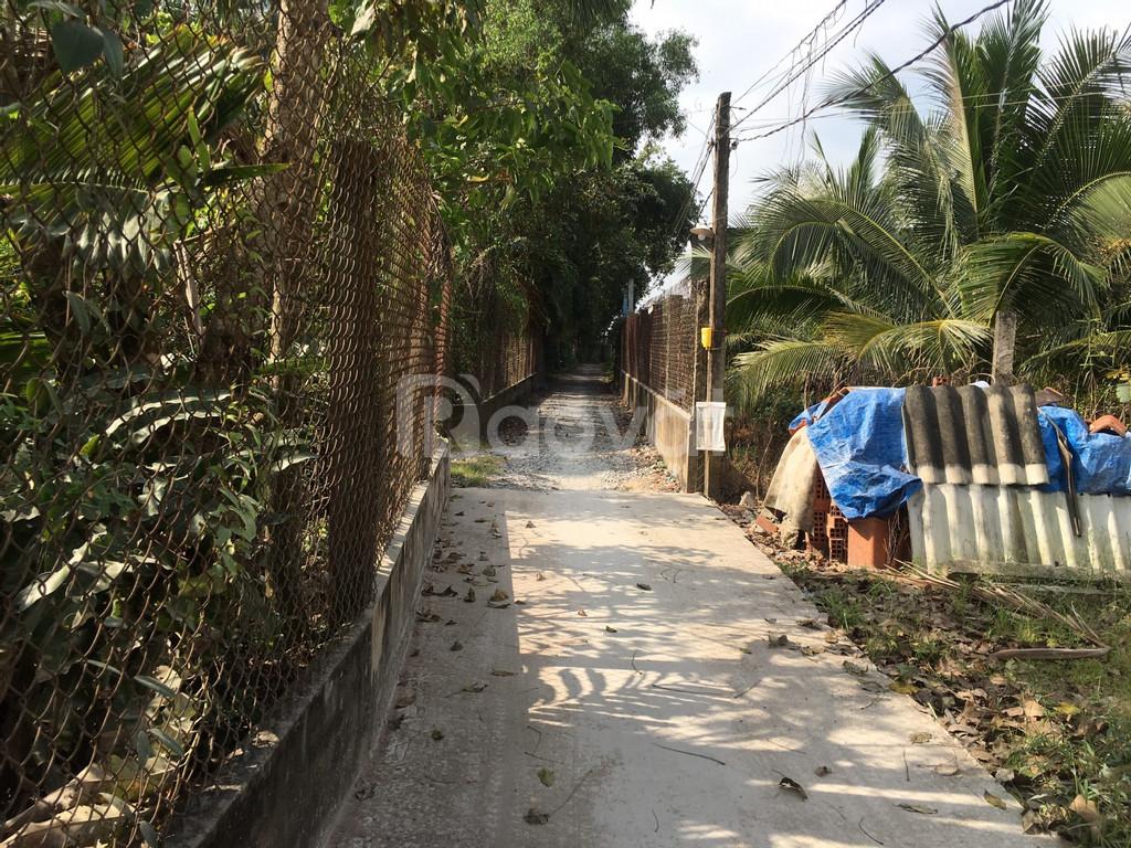 Đất 4x40 đường huyện 31, xã Tân Hương, Châu Thành Tiền Giang.