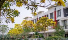 Bán biệt thự song lập của tiểu khu Botanic, KĐT Gamuda, DT 118m2